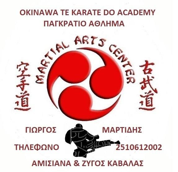 martidis okinawa te karate do 2