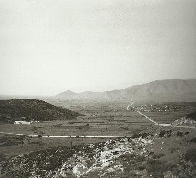 AMIGDALEWNAS 1930